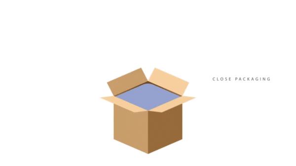 VCI Paper&BoxLiner Bag